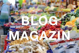 Magazin / Blog